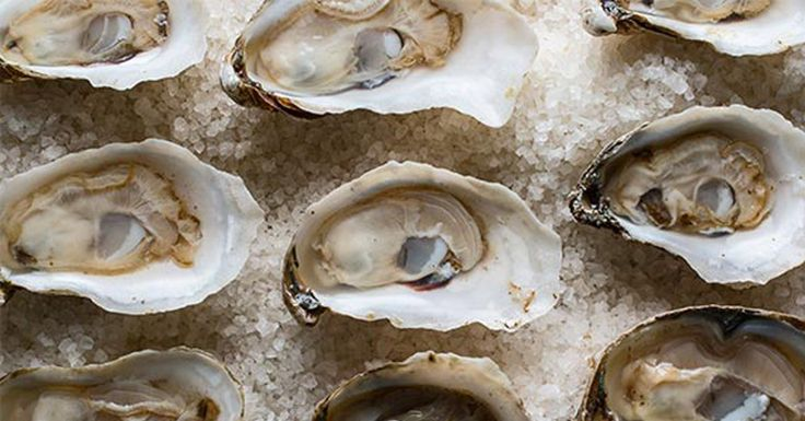 From tours of oyster farms to tasting menus, the range of restaurants in  Virginia Beach <http://www.visitvirginiabeach.com/fall> promises to please  seafood lovers of all stripes.