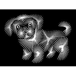 String Art Fun Shih Tzu puppy Pattern