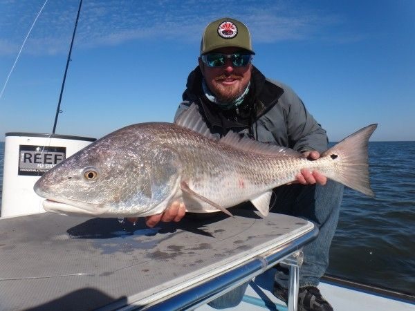 17 best images about top saltwater fishing guides and for Florida saltwater fishing