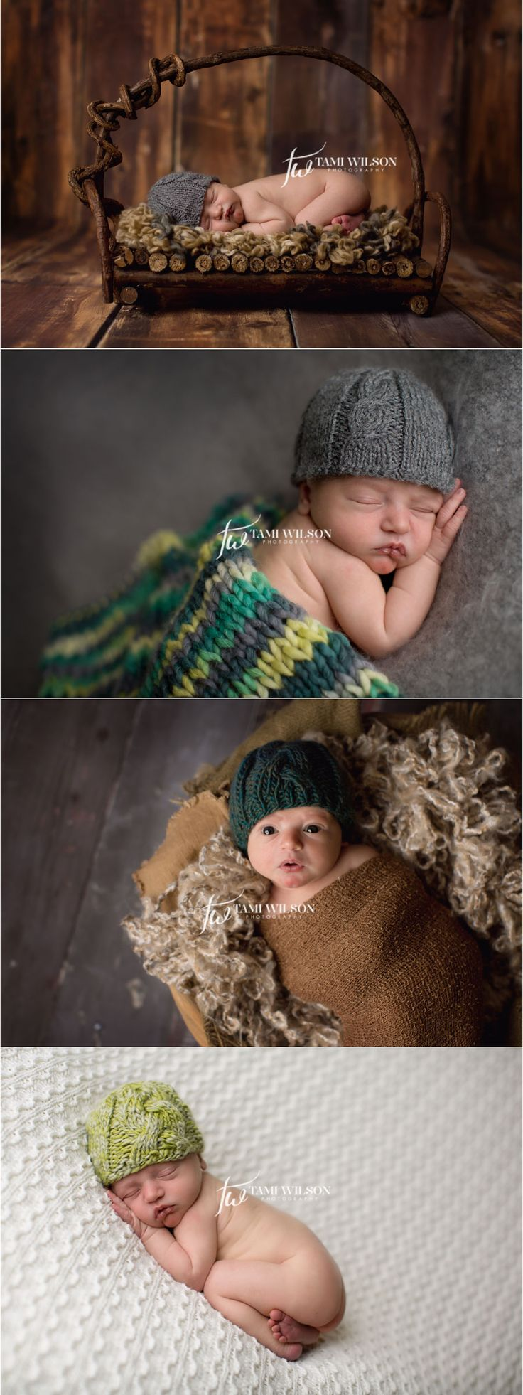newborn baby boy portrait session by tami wilson photography