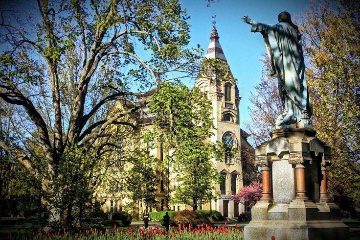 Notre Dame University | www.raise.me