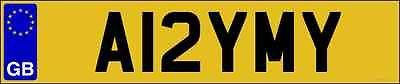 AMY AMYS AMIE AMIES AMMI AMMIES AME AMES PRIVATE NUMBER PLATE REGISTRATION MARK