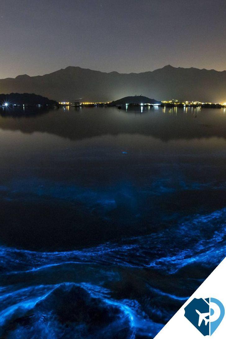 La Laguna de Manialtepec se encuentra a 16 kilómetros de Puerto Escondido; es un sitio de excepcional belleza, rodeado de exuberante vegetación de manglar.  ¡Tienes que vivirlo! #PonteaViajar