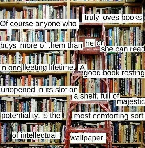 I live in a house like this. My father, just like me, absolutely adores books.