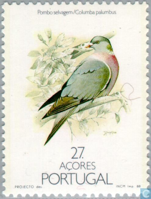 1988 Azores - Birds