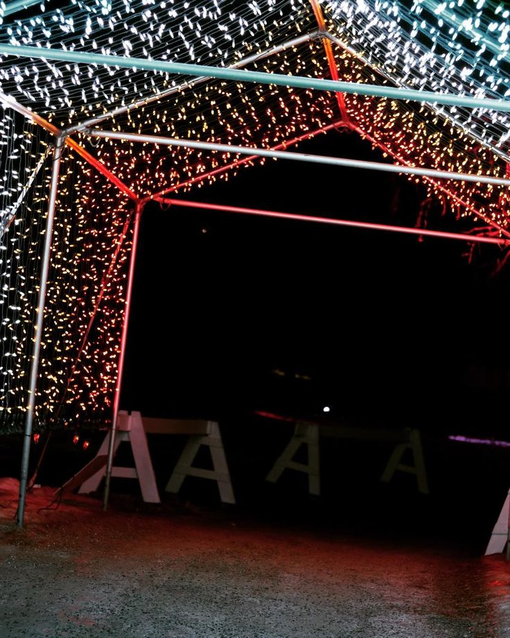 At the zoo light show.
