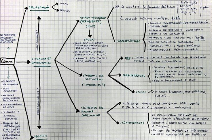 Esquema del Coma y sus posibles evoluciones.