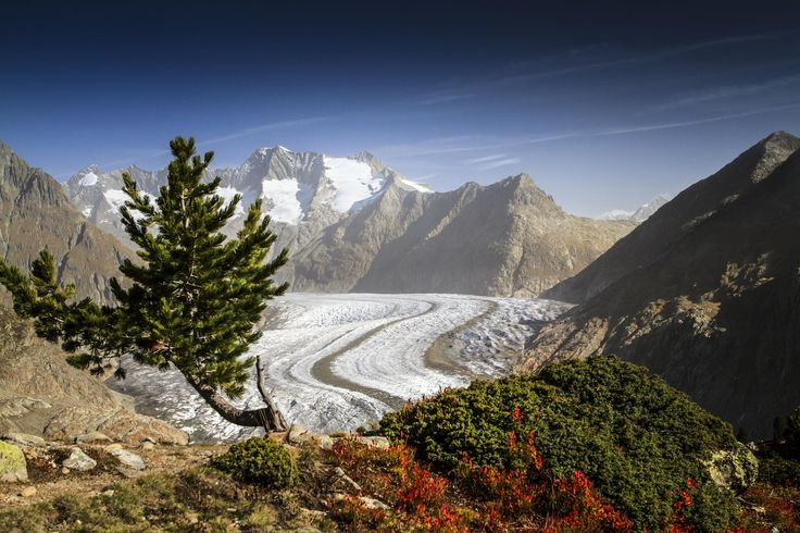 Photograph Swiss Alps: Aletsch Glacier by Frederic Huber on 500px