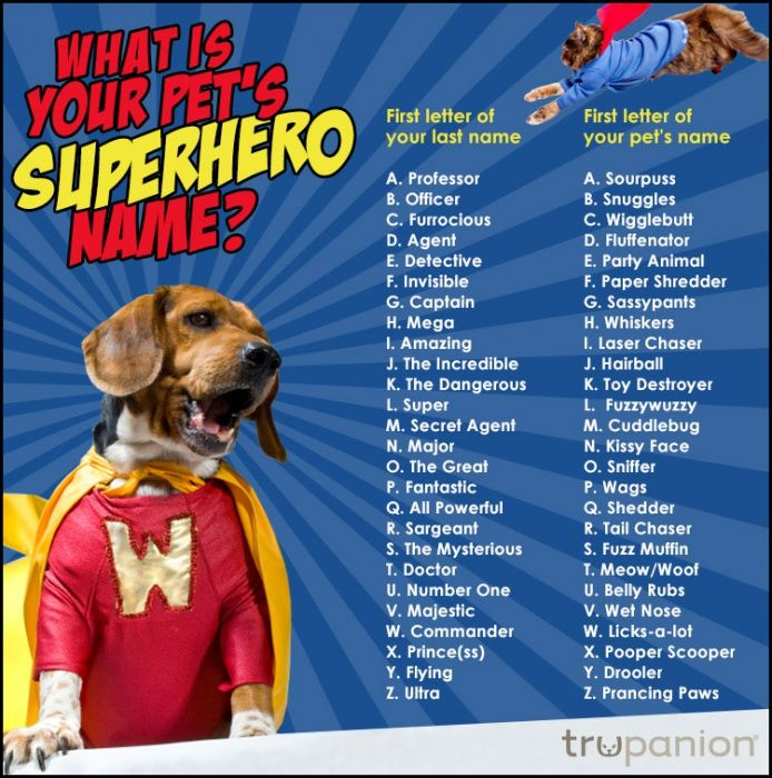What's your pet's superhero name?