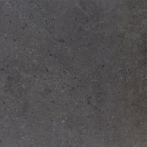 Dignitary Governor Black Dr11 Porcelain Floor And Wall