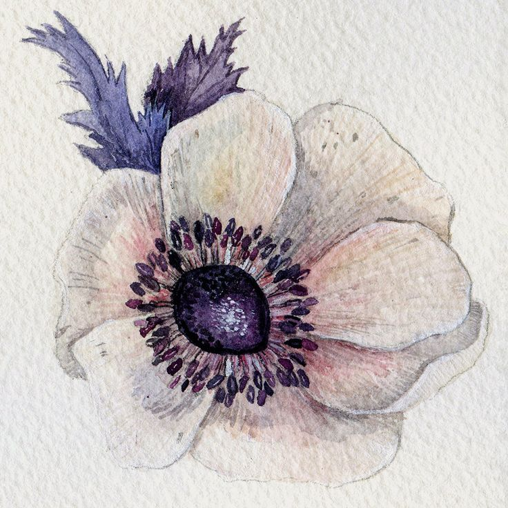 by Watercolorhoney on Etsy