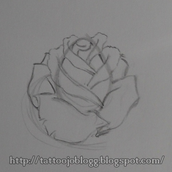 17 best images about draw roses on pinterest