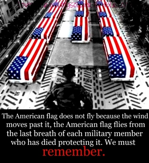 very true....something to remember...Redwhiteblu, Remember, True Something, True Warriors, True Heroes, Military Personnel, Infinite Amount, Inspiration People, American Soldiers