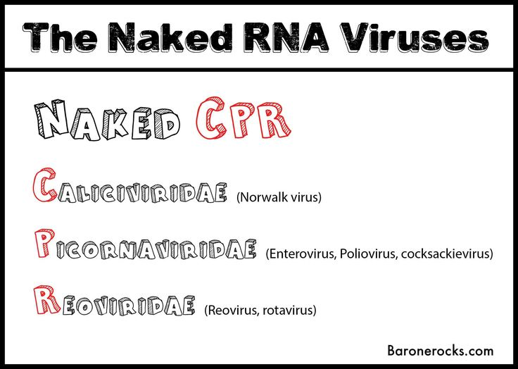 Naked RNA Viruses