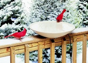 """HB600 20"""" Heated Bird Bath Dish. 3 Yr. warranty. Ice free water in winter. 150Watts, 120Volts. Built in auto thermostat. Mounts to deck or railing or posts or poles 4X4. Can also mount to Bird Bath Pedestal 12"""" diameter or less."""