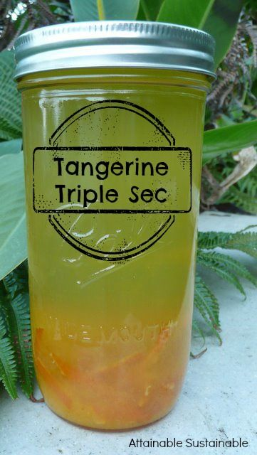 It's citrus season! How's this for a kicky way to preserve some of the abundance? Tangerine Triple Sec.
