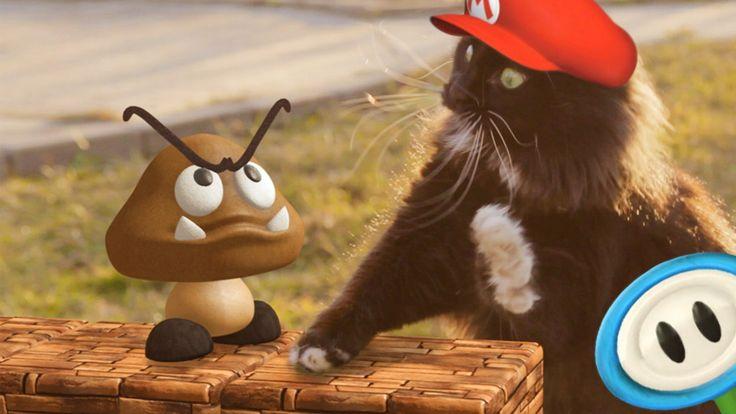 OH MY EFFFIN GAWD!  Super Mario Cat