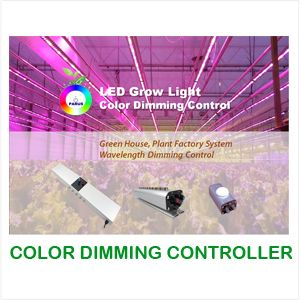 Future of LED Grow Lighting