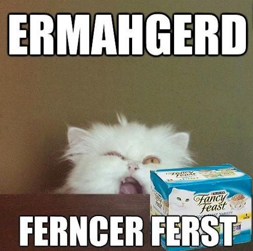 So sick of the Ermergerd meme but these are funny!