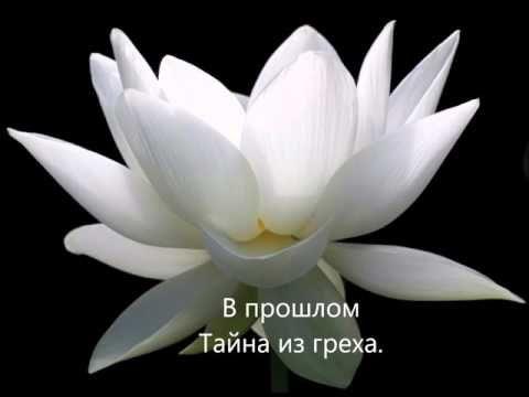 Белый лотос| Стихи | Дельта Овна - YouTube