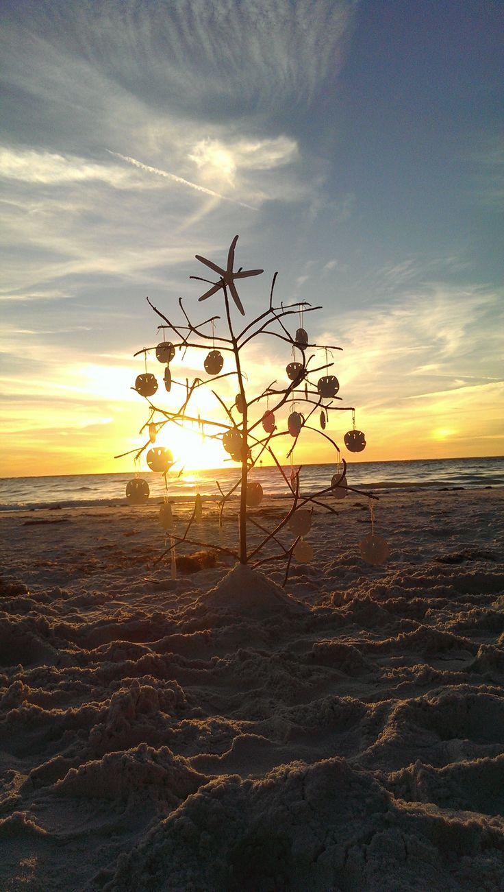 My 5 year old cousins idea. We do Christmas in Florida. Our Christmas tree. - Imgur