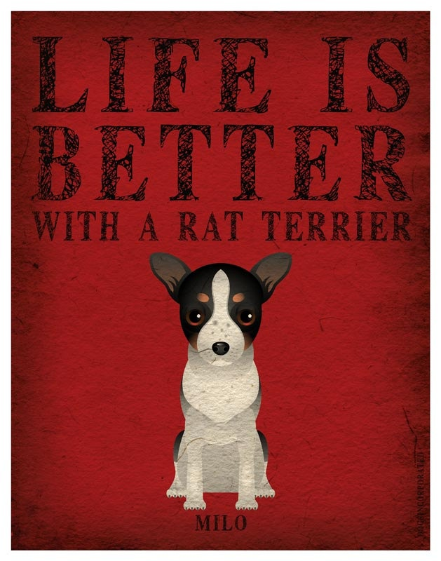 Life is Better with a Rat Terrier Art Print 11x14 - Custom Dog Print. $29.00, via Etsy.