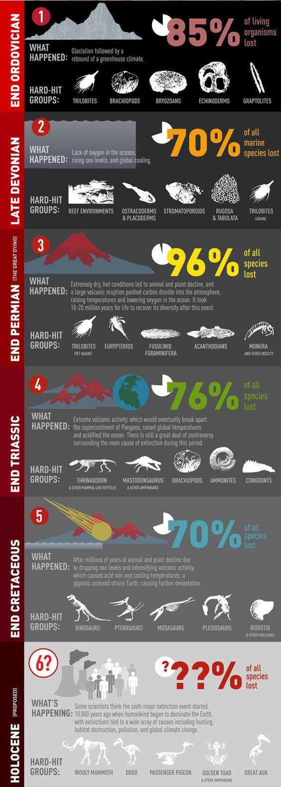 Las grandes extinciones de la historia de la Tierra