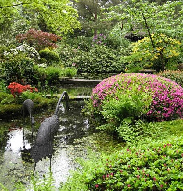 34 best Chinese Gardens images on Pinterest Chinese garden - chinese garden design