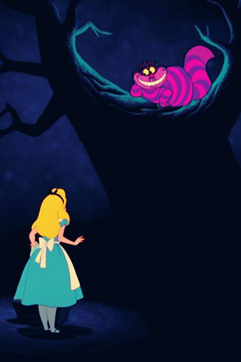 Alice mat de kolder kat