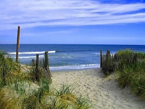 wildwood nj beach dunes photo | North Wildwood, Surf Song Beach Resort, Jersey Shore Condo, Wildwood ...