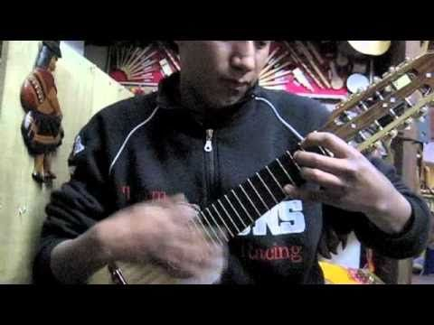 Fantastic Charango Playing in La Paz, Bolivia in Local Music Store - YouTube