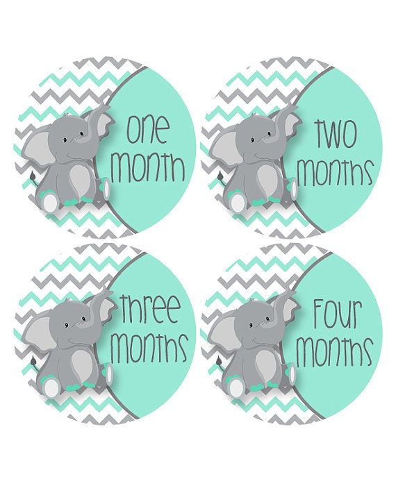 Elephant Monthly Stickers Aqua Baby Sticker by MoonLitPrintables