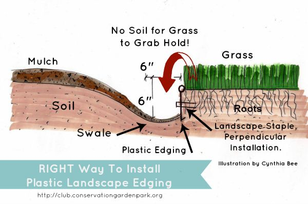 How to install plastic landscape edging that WORKS!