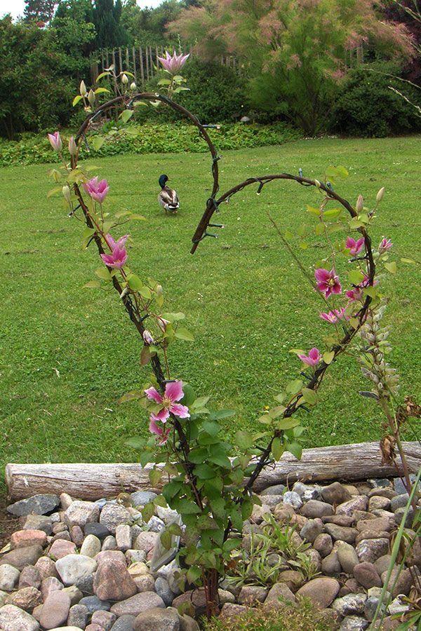 Barbed wire heart vine – Taylor Rentschler