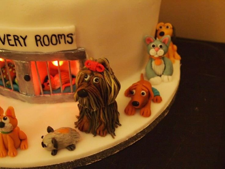 Vets Cake Recovery Rooms Complete With Heat Lamps Tierarzt Tiere Kuchen