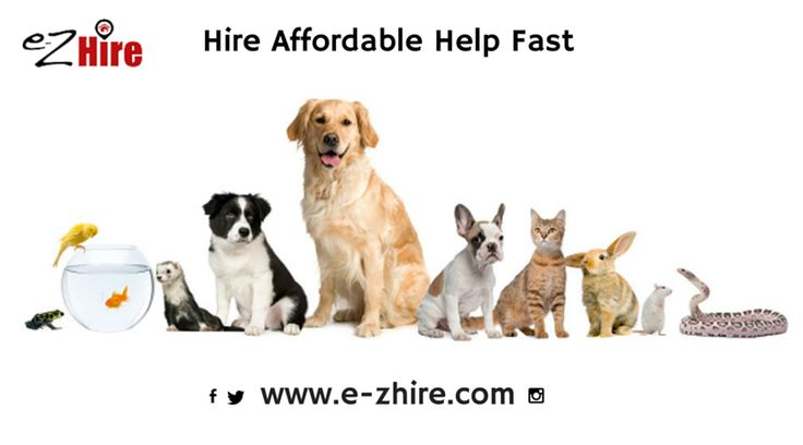 Need someone to care for your pet while away from home? Visit E-ZHire.com