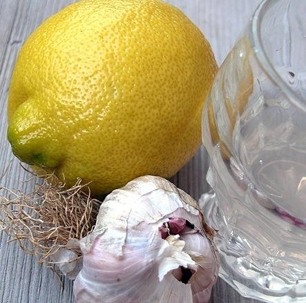 Un rimedio naturale contro febbre ed influenza? Prova la tisana antibiotica