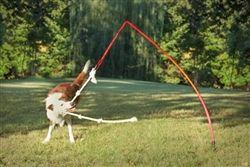 The Tether Tug Dog Toy #tether #tug #toy #dog #poshpuppyboutique