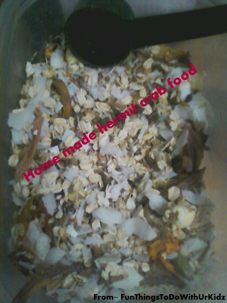 Our hermit crab food recipe~http://funthingstodowithurkidz.blogspot.com/2014/08/home-made-hermit-crab-food-good-for.html
