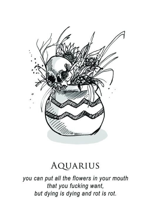 "Aquarius, ""shitty horoscopes book iii: petty existential crises"""
