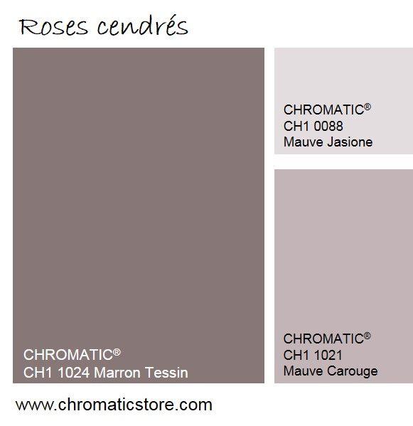 Les roses cendrés, très présents en décoration en 2015, sont souvent associés à des bruns, des gris fumés et des tons bleu ciel. www.chromaticstore.com