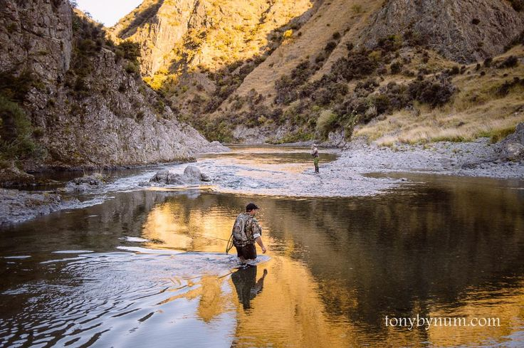 Rangitikei River Trout Fishing