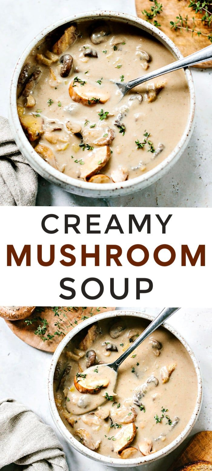 Homemade Cream Of Mushroom Soup Homemade Soup Recipe Cream Soup Recipes Delicious Soup Recipes