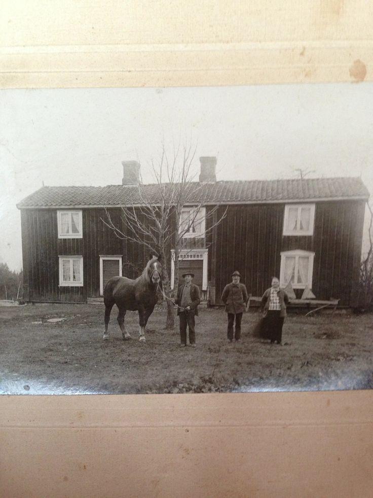Kvarterbo 1925