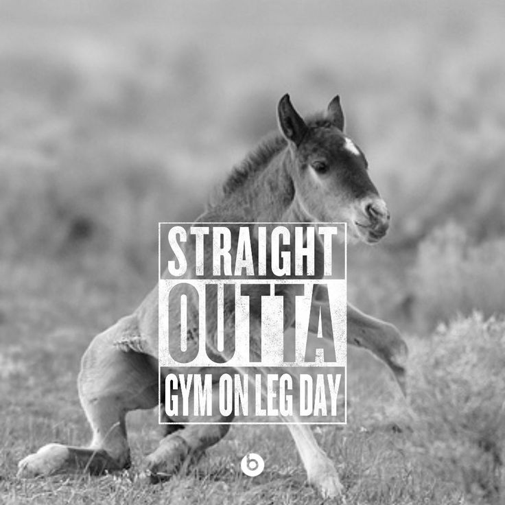 straight outta gym on leg day.. lol that looks like me this morning.. funny