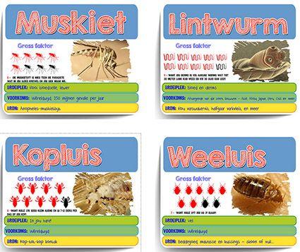 Afrikaanse taakhulp: Parasiete. Gross faktor speelkaarte. Muskiet. Lintwurm. Kopluis. Weeluis. Diere. Animals. Hoezit