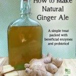 The problem with ginger ale soda you buy from the store is that it contains absolutely no health benefits of ginger. Although it may taste delicious, but that's because of the added fructose corn syrup and artificial flavors. Not exactly good for your...