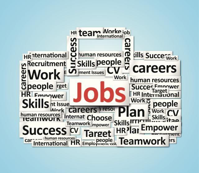 14 best Resumes images on Pinterest Resume tips, Resume ideas - human resources skills resume