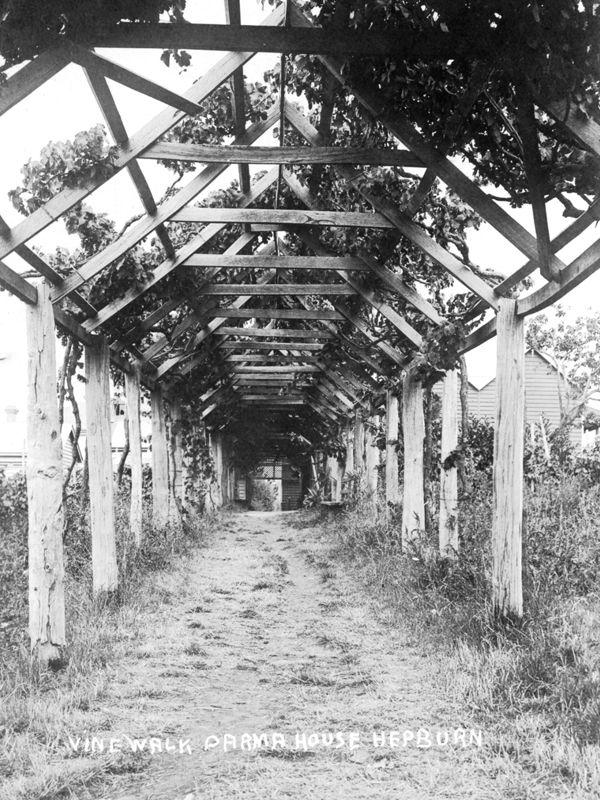 1879, Villa Parma vine walk established by Italian Swiss migrants