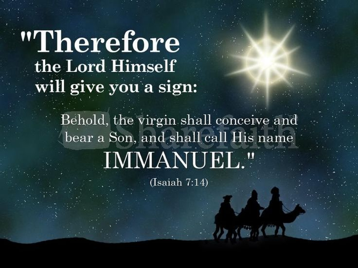 130 best Merry Christmas images on Pinterest | Merry christmas ...